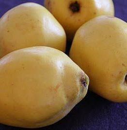 Kvede konfekt - quince cheese, eller membrillo om du vil