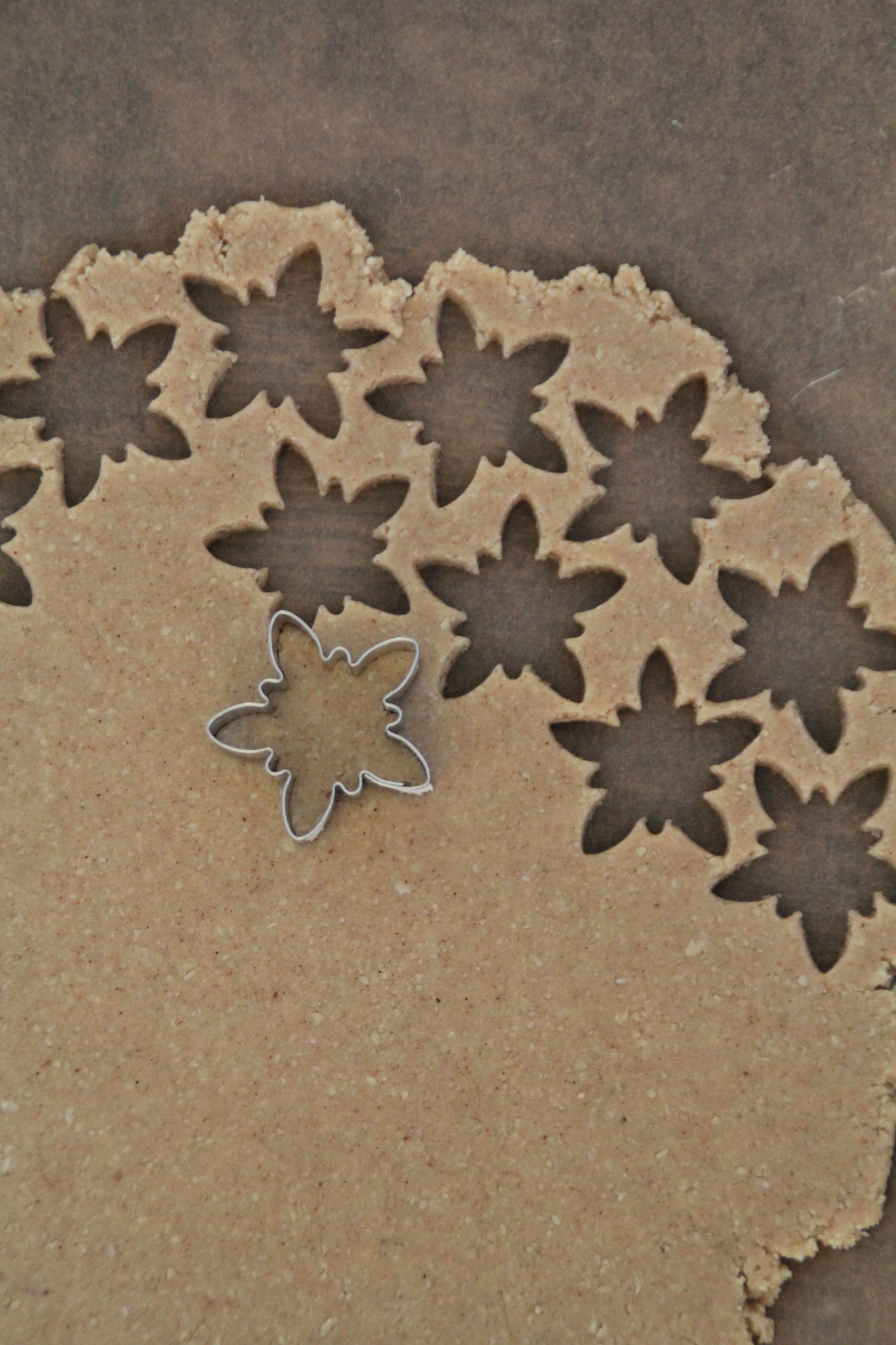Kanelstjerner (Zimtsterne)