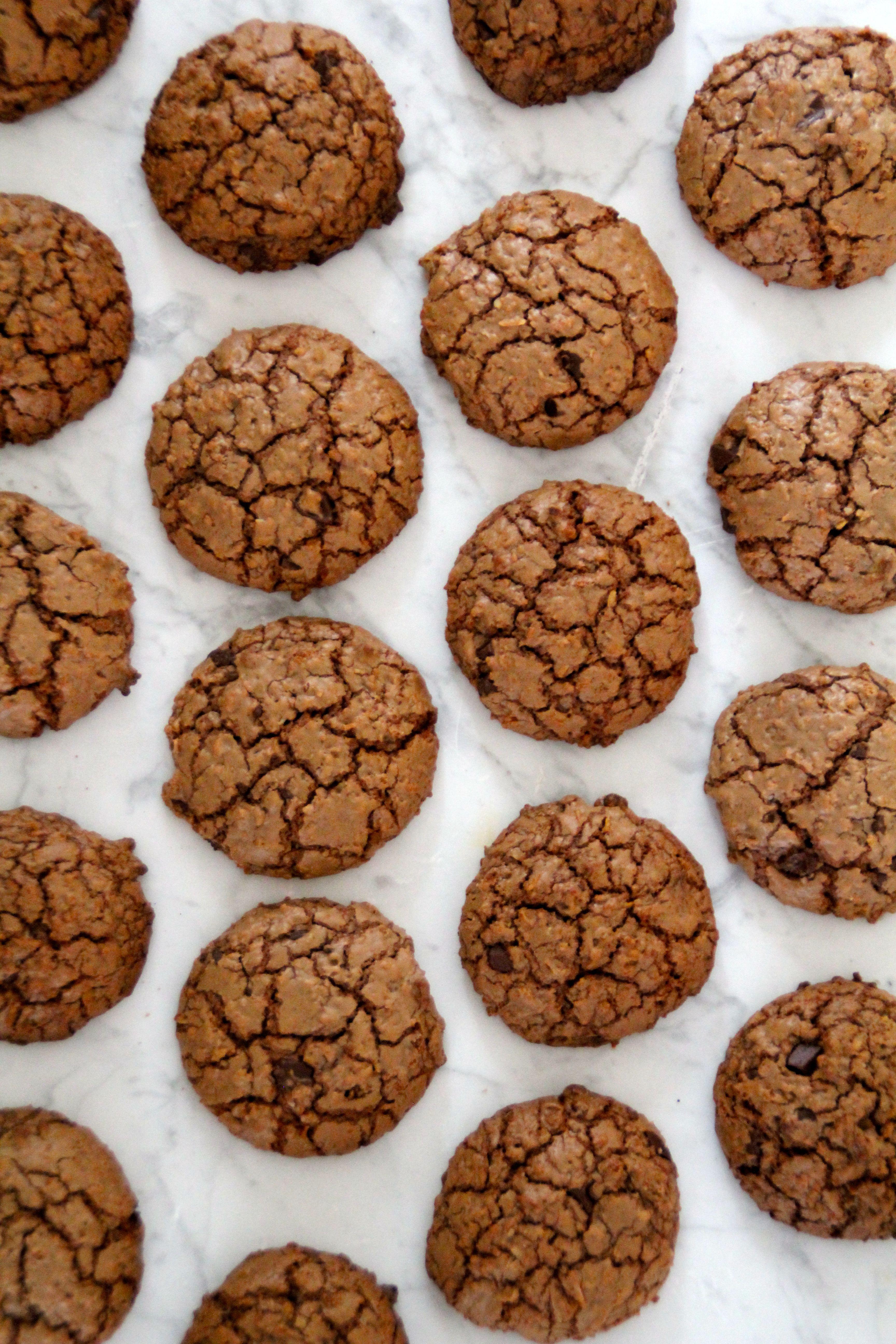 Sjokoladekjeks med kokos