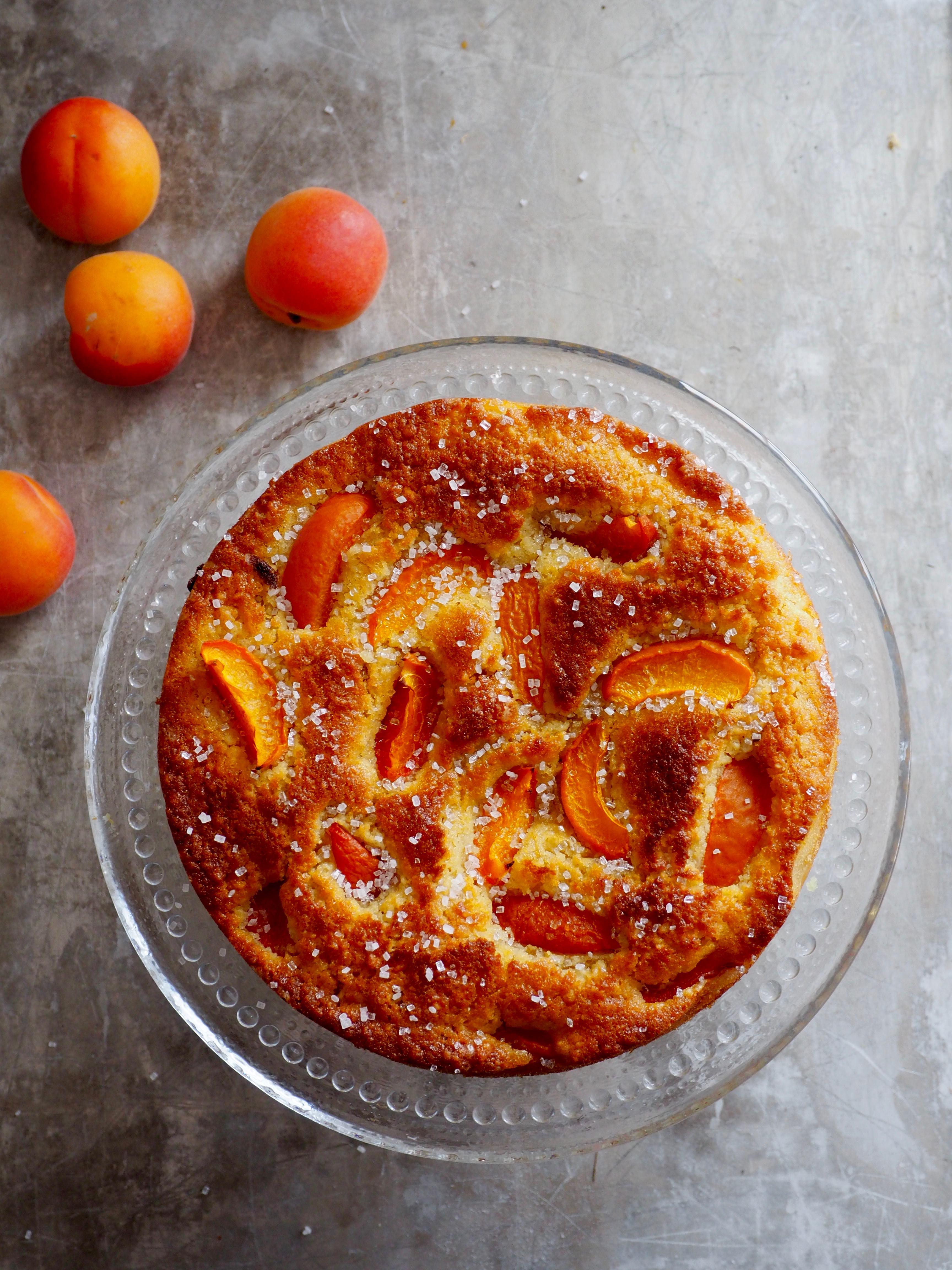 saftig aprikoskake